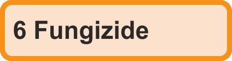 6 Fungizide