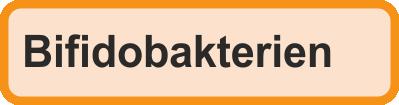 Blutanalyse Bifidobakterien